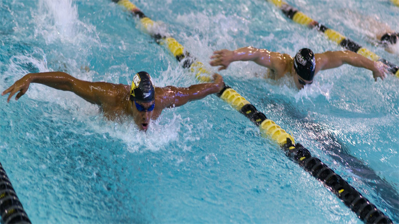 Retrievers in Rio: UMBC alumni compete on the world stage at the 2016 Olympics